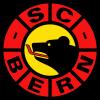 Hockey: CP Berne champion de Suisse et YB ?