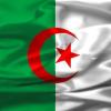 CAN 2012:  Algérie–Tanzanie 1:1