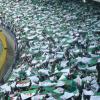 Algérie en Afrique du Sud: Au cœur des verts